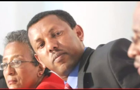 DireTube Exclusive - Interview with Lidetu Ayalew on PM Meles Death