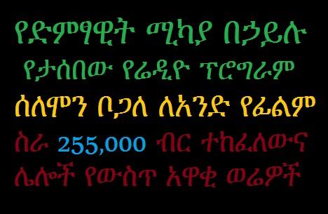 EthiopikaLink - The Insider News Update from EthiopikaLink - Dec 28, 2013