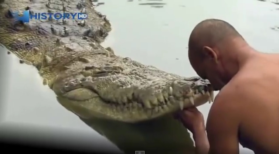 History HD - Very touching Friendship crocodile with the person