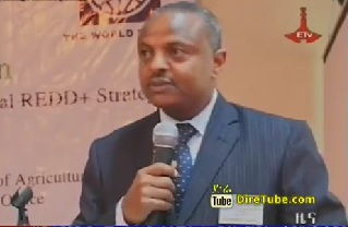 Ethiopian News - The Latest Amharic News April 30, 2013