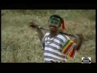 ManAlemosh Dibbo - Shega Bicha