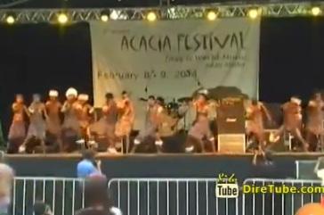 Mestawet - Acacia Jazz and World Music Festival @ Addis Ababa Feb, 2014