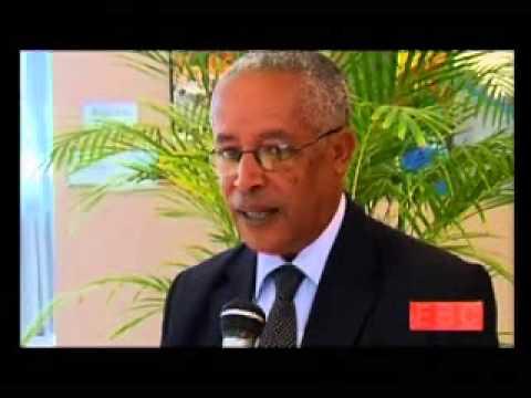 Ethiopian News - Attracting Swiss Investors